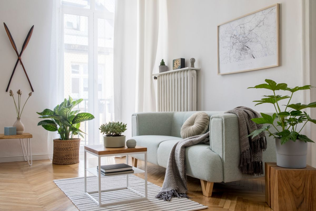 Affordable Decorations that Will Enhance Your Cayce Apartment