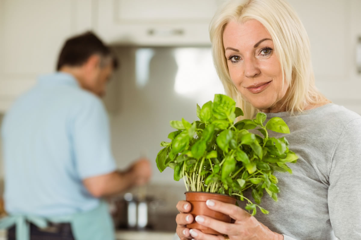 Six Herbs You Should Grow in Your Apartment