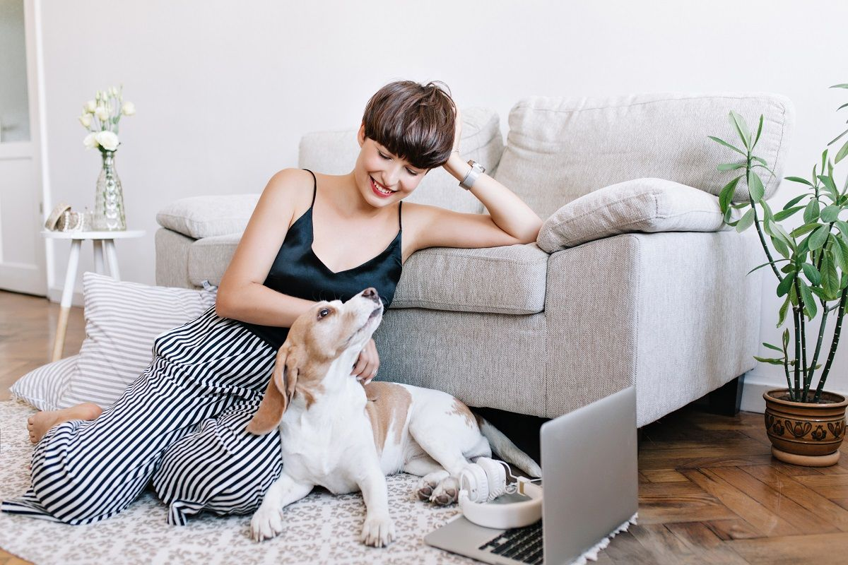 Five Tips to Find a Pet-Friendly Apartment